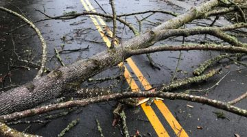 Is Road Debris Covered by Insurance?| O'Connor and Partners, PLLC